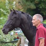 Hoefsmid en gebitsverzorger paarden